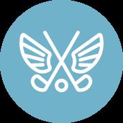 Platinum package icon